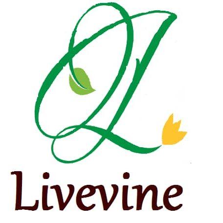 Livevine Investment PBC