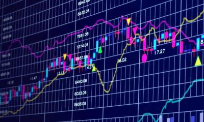 Equity and Fixed income markets advisory