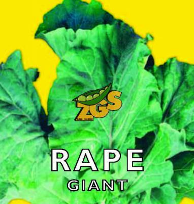 Rape Giant Seeds